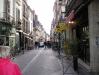 TOUR CASTELLI DELLA LOIRA - 2006